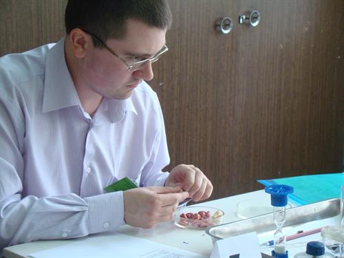 Семенцов Андрей Сергеевич